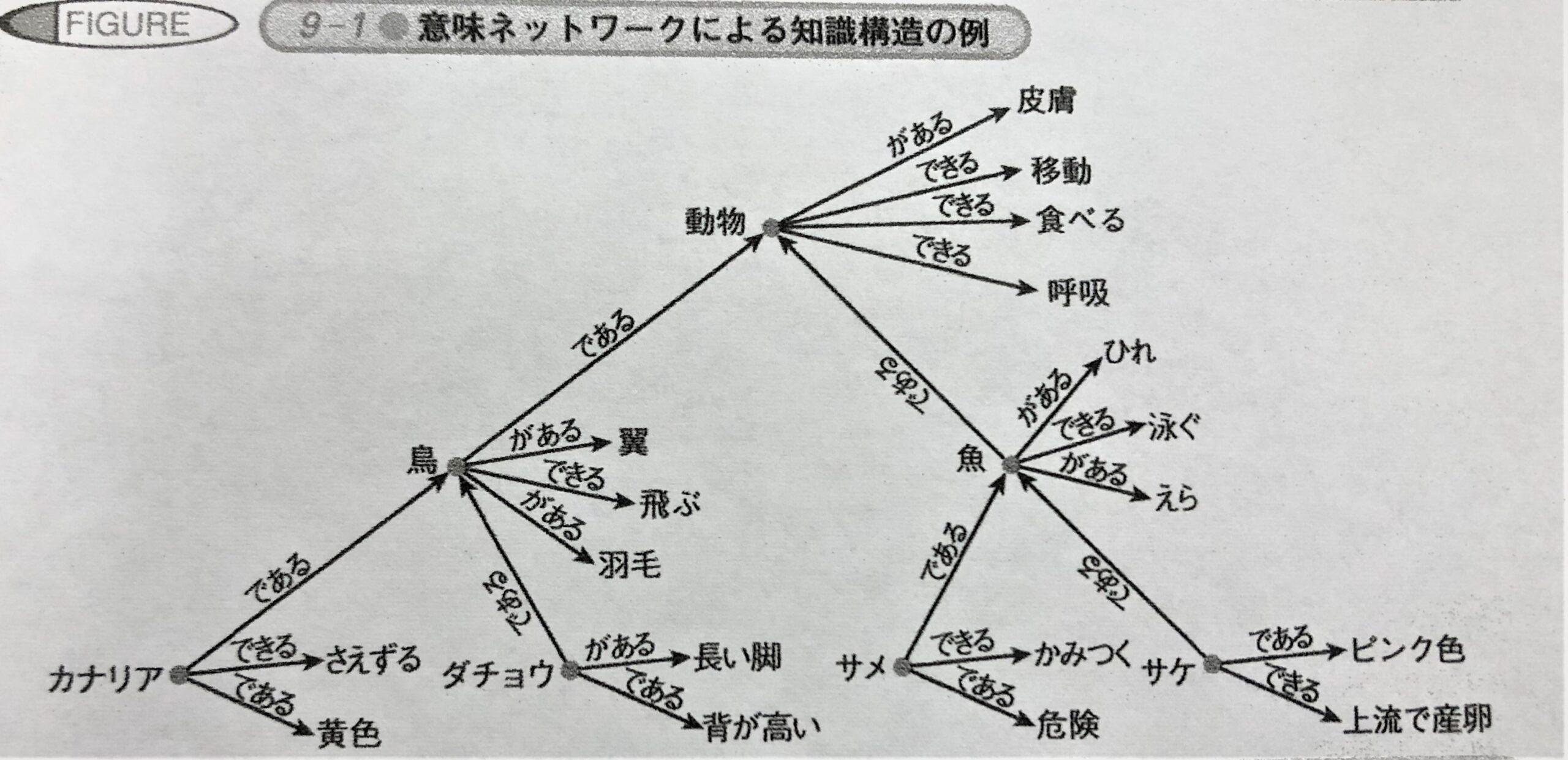 知識構造の例