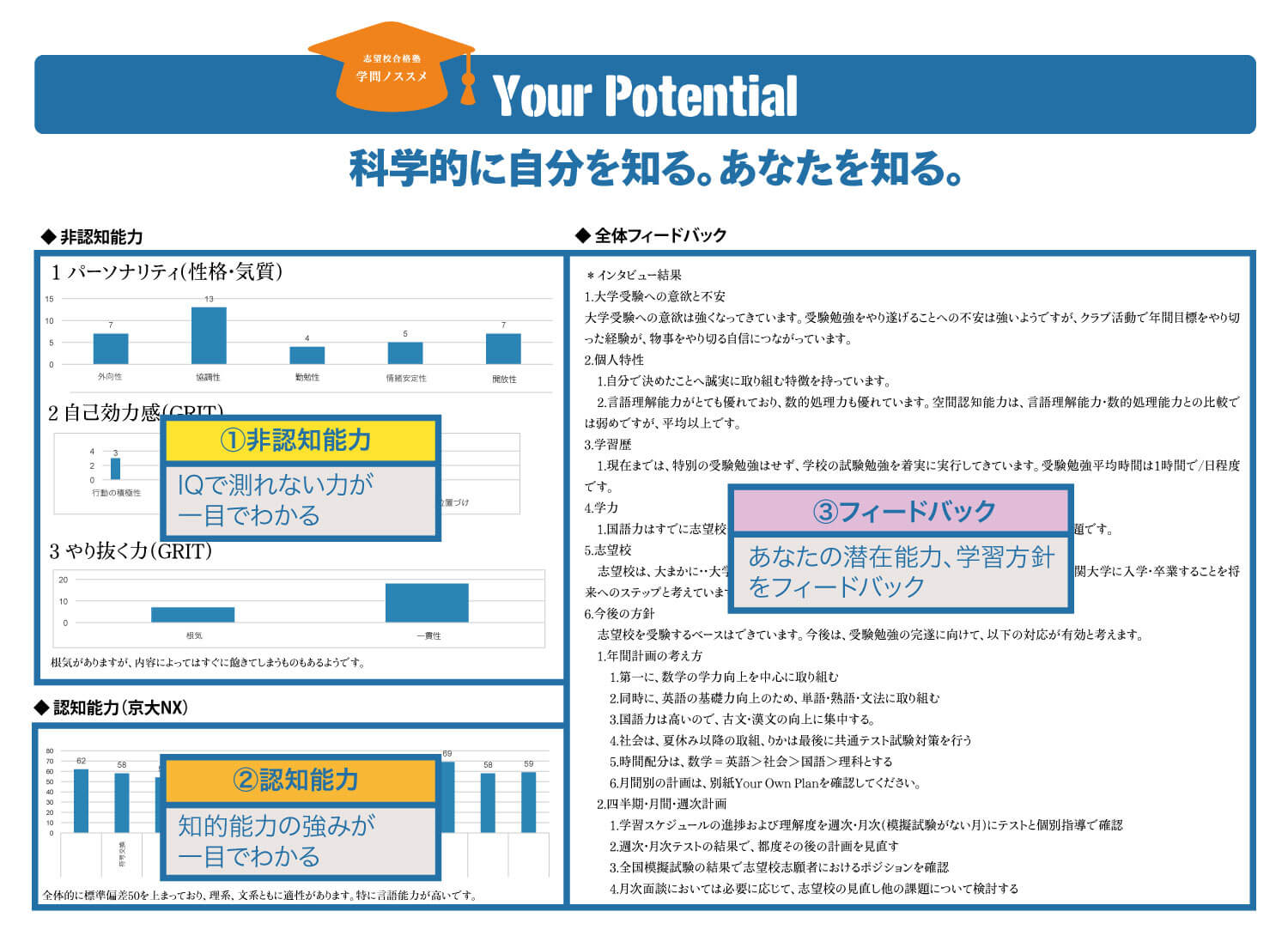 Your Potential レポート